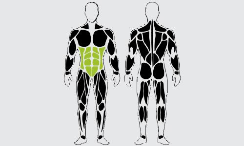 Bench swiss spieren