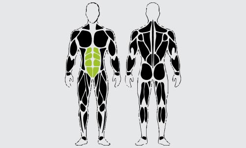 Decline bench crunches spieren