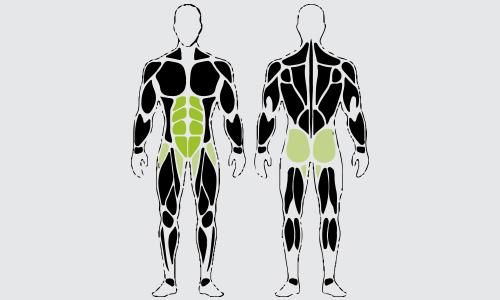 Flat bench knee-ups spieren