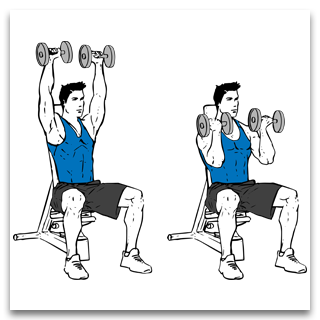 Seated Arnold Dumbbell Press
