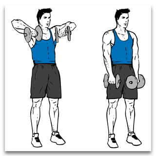 Two Arm Dumbbell Front Shoulder Raises