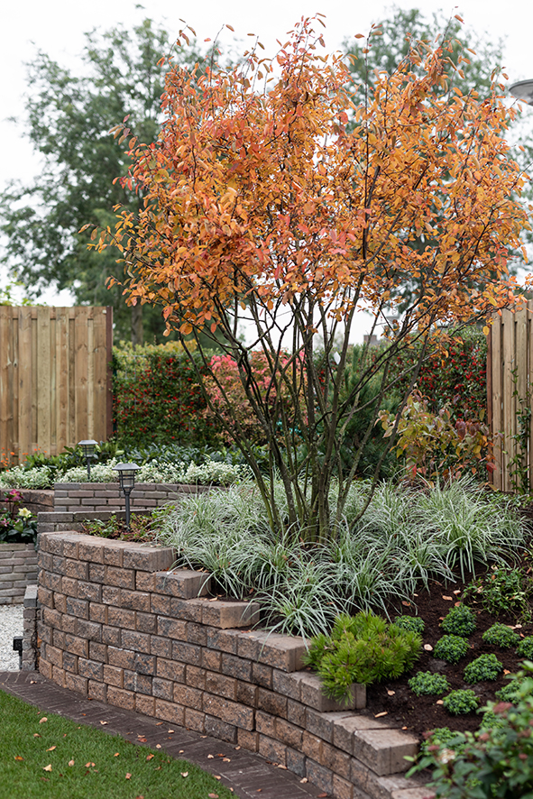 de grote tuinverbouwing gebruikte materialen afl. 10