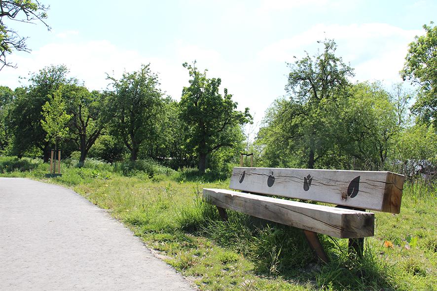 Rijnvlietbank: stijlvolle combinatie van hout en cortenstaal