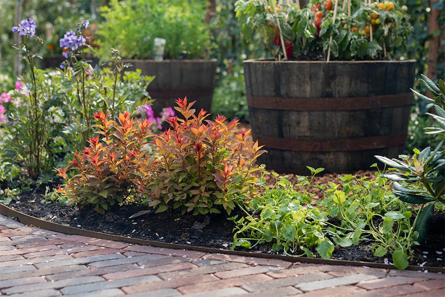 de grote tuinverbouwing gebruikte materialen afl. 35
